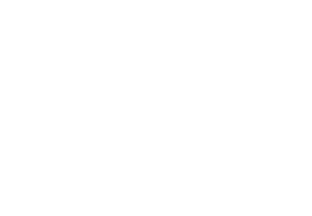 Case Accordingly LLC