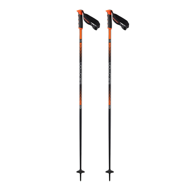 Salomon Arctic S3 Pole | 2020