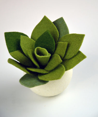 Felt Succulents Project Kit