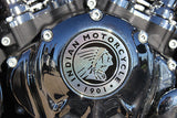 2014 Indian Motorcycle embelem