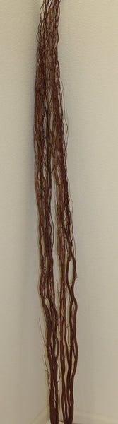 "25-2-1  Natural dry plant 5 single stem 70"" (175 cm)"