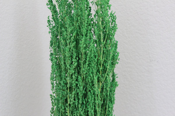 "25-5-3 Natural dry plant Full bouquet 28"" (70 cm)"