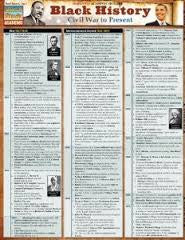 Black History: Civil War to Present    (BarCharts)