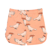 carlijnq | shorts | pink sunset parrot
