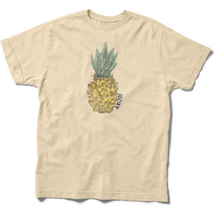 ONE LINE PINEAPPLE