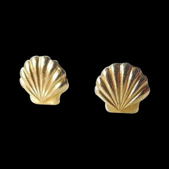 Seashell Stud Earrings Gold Silver