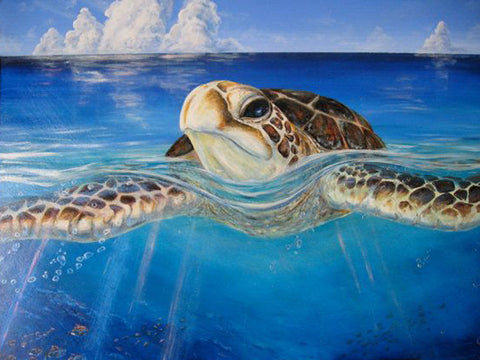 Hand Painted Sea Turtle On Canvas