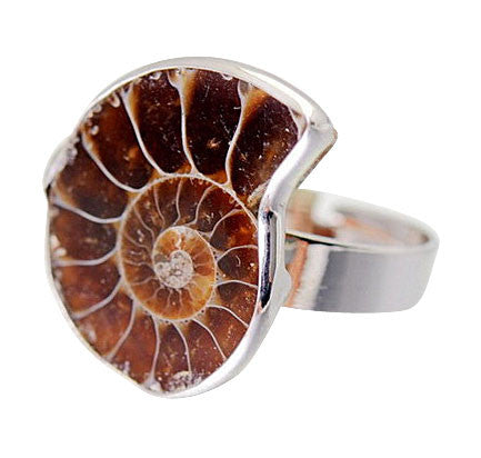 Ammonite Seashell Quartz Ring