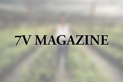 7V Magazine - Role Models