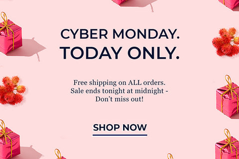 Newsletter: Cyber Monday Free Shipping!