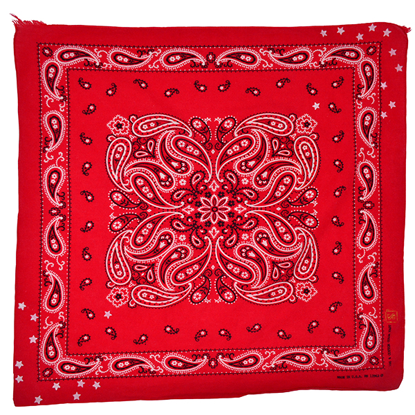 Doctor'd by Squar'd Away - Red Star Bandana
