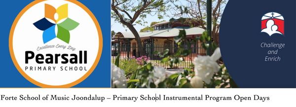 Primary and Secondary School Instrumental Programs