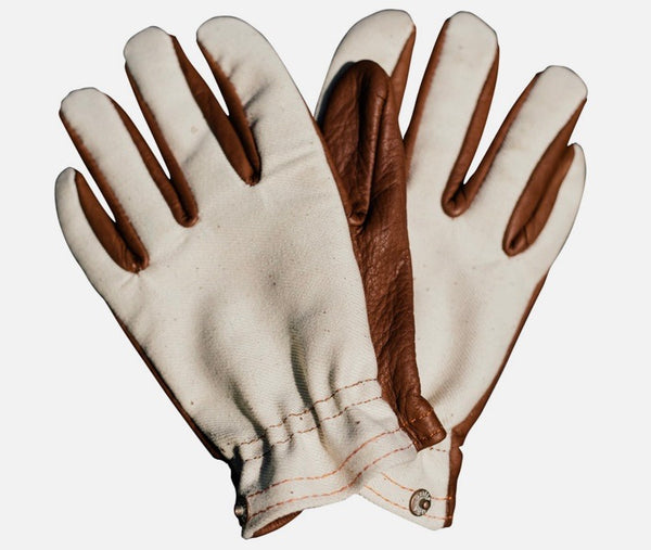 Sold Out: Blanco Gloves