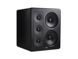 S-300 THX Select 2 Monitor