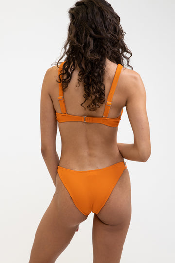 Palm Springs Panelled Underwire Top Salamander