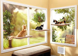 Fabulous Cat Cushion Window Hammock