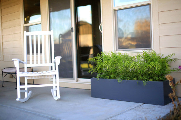 Rich Color, Clean Lines: 2016 Residential Exterior Landscaping Trends
