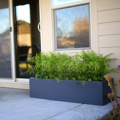 "12"" Tall Low Profile Outdoor Planter Boxes"