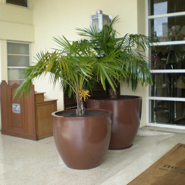Wannsee Large Tree Planters Fiberglass Planters By Jay