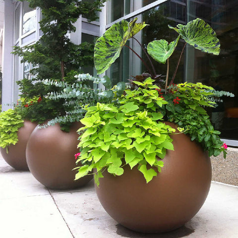 ... Globe Indoor And Outdoor Planter Pot     Round Planter Pots   Jay  Scotts Collection ...