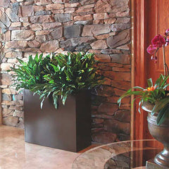 Large indoor planters indoor plant flower pots pots Tall narrow indoor plants