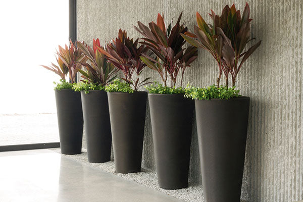 Tall Planters. Modern Planter Pots   Boxes   Stylish Plant Containers   Wholesale