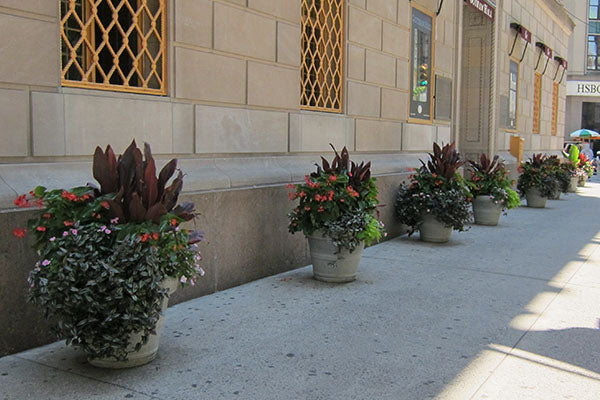 Commercial Planters