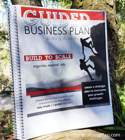 BUILD TO SCALE | GUIDED Business Plan™