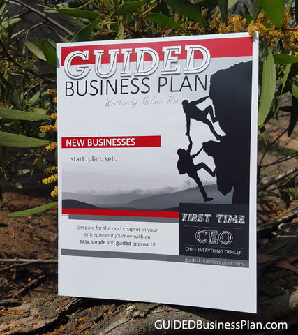 FIRST TIME CEO | GUIDED Business Plan™ (100 books)