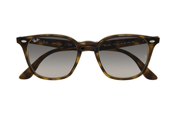 Ray Ban Havana with Grey Gradient Dark Grey