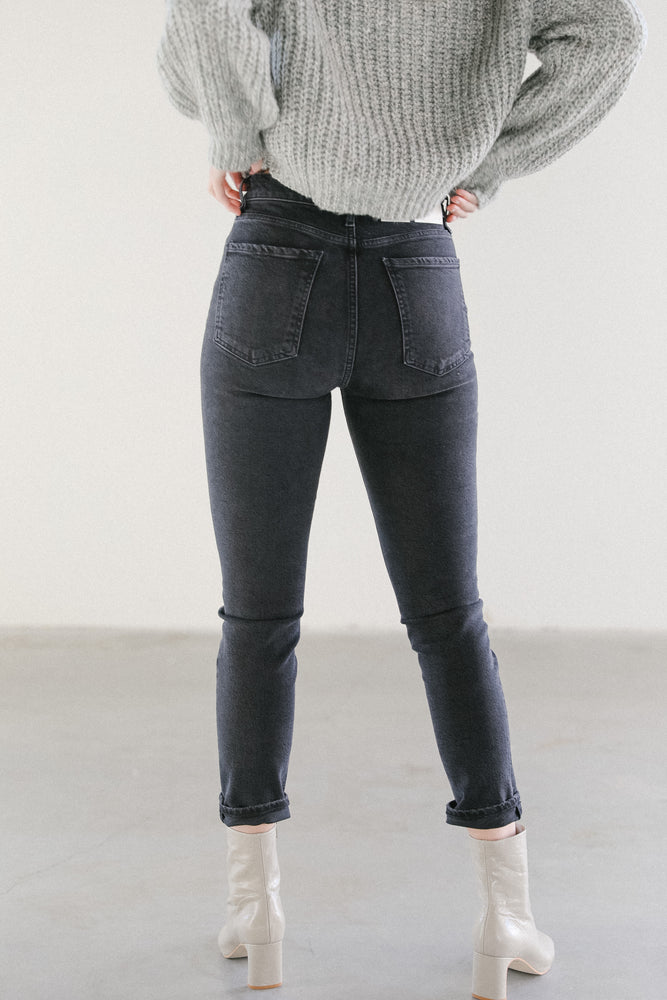 Agolde Riley Denim in Panoramic