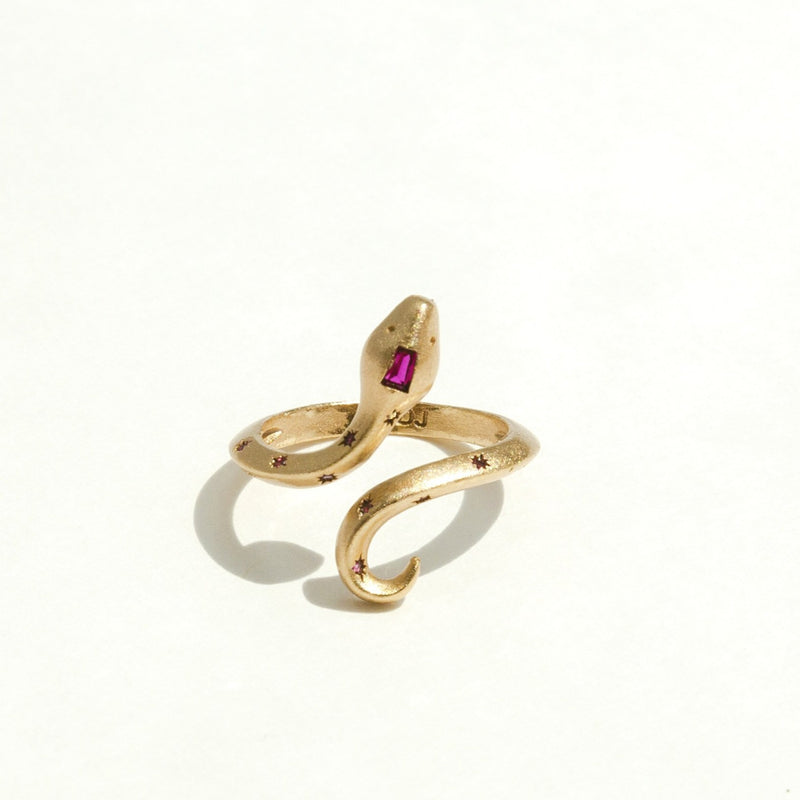 Guardian Ring in Ruby