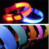 Cat & Dog LED Flashing Nylon Pet Dog Collar Night Safety - All In One Place With Us - 1