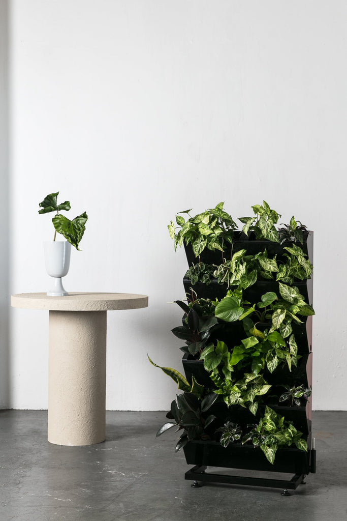 A Five Minute Lesson on Vertical Gardens