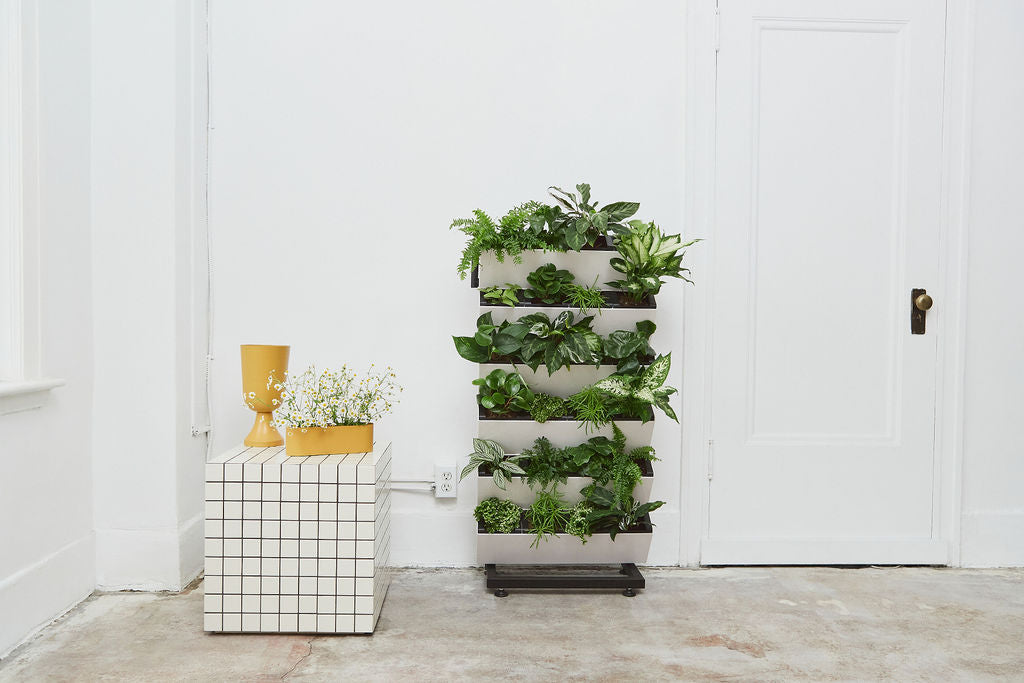Vertical Garden with Herbs