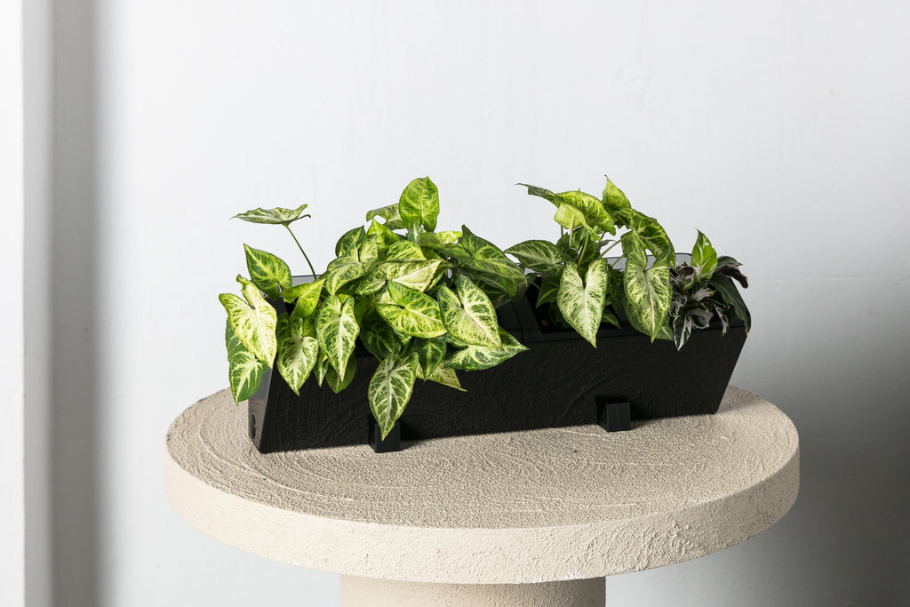 Vertical Planter - Urban Eden & Co
