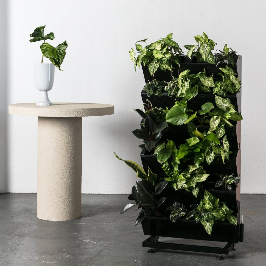 Vertical Garden - Urban Eden & Co