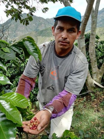 Colombia - Giraldo Coffee