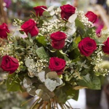Twelve Red Roses Amesbury Delivery Christmas and Valentines Delivery