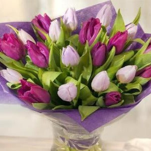 Simply Tulips in a Bouquet Lilac and Pink