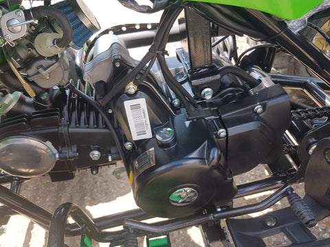 CHEETAH 110CC QUAD BIKE BY TAO TAO 4 STROKE AUTOMATIC WITH REVERSE 8