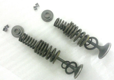 VA014 COMPLETE VALVE & SPRING KIT FOR BASHAN BS200S-7 BS250S11-B 250CC QUAD BIKE - Orange Imports - 1