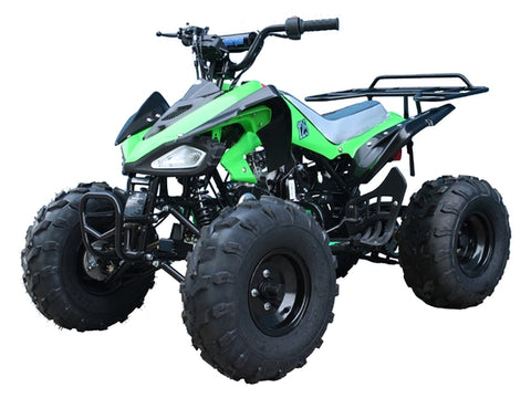 "CHEETAH 110CC QUAD BIKE BY TAO TAO 4 STROKE AUTOMATIC WITH REVERSE 8"" TYRES"