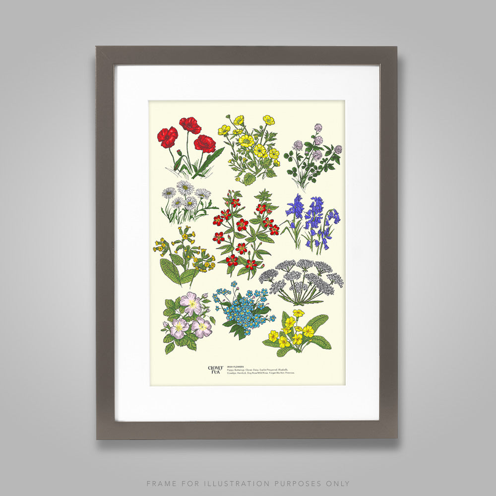For illustration purposes only - Irish Wildflowers A4 print, framed with mount in 300mm x 400mm black frame.
