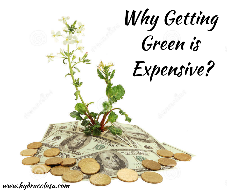 Why Getting Green is Expensive?