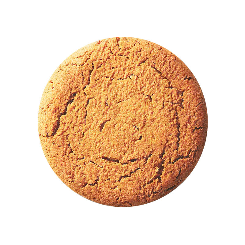 Lenny & Larry's The Complete Cookie - Pumpkin Spice