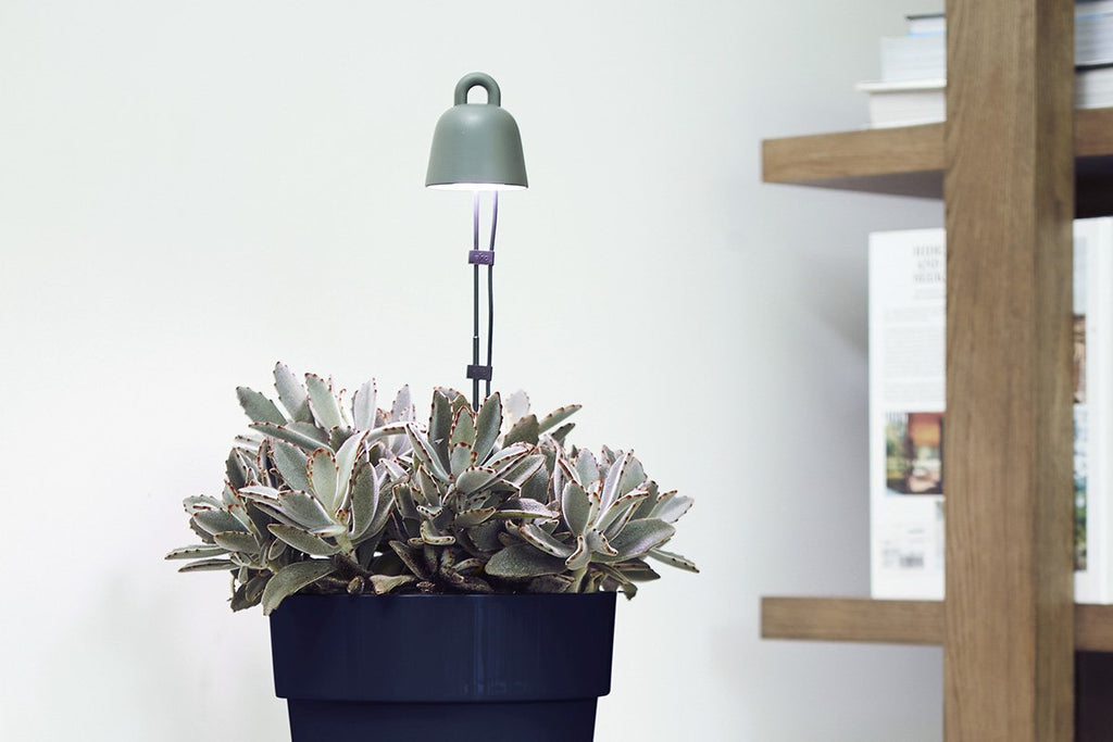 Bulbo®  Made in Italy LED lights for indoor gardening