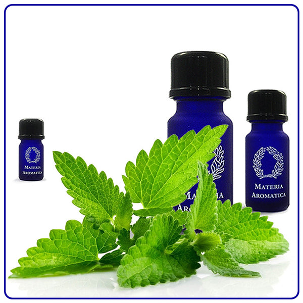 Spearmint, Essential Oil - Materia Aromatica