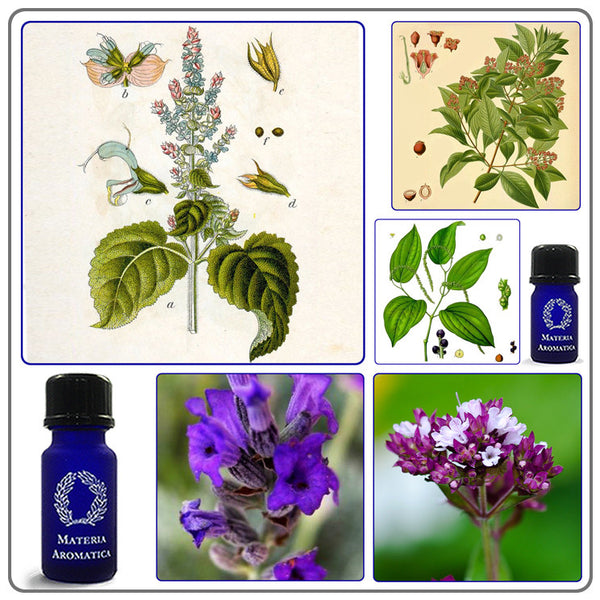 Tone & Soothe, Essential Oil Blends - Materia Aromatica