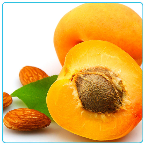 Apricot Kernel, Vegetable OIls - Materia Aromatica